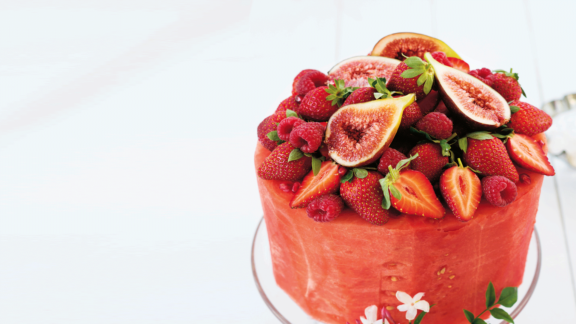 OMG! It's A Watermelon Cake