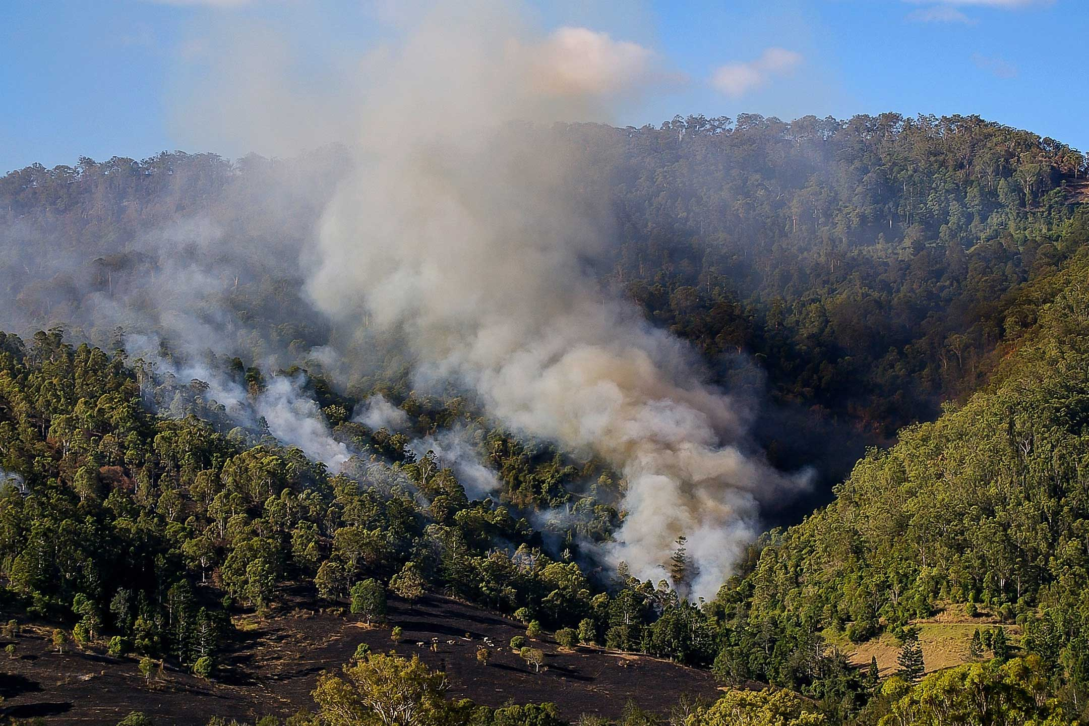 Bushfire2160