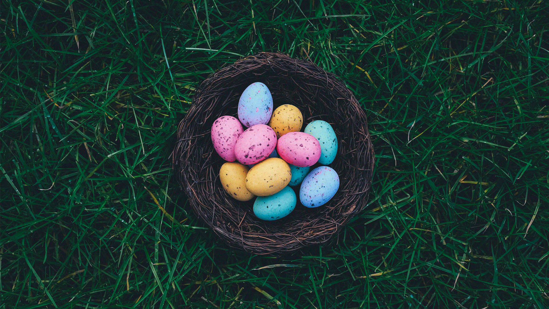 35 Fun Easter Activities