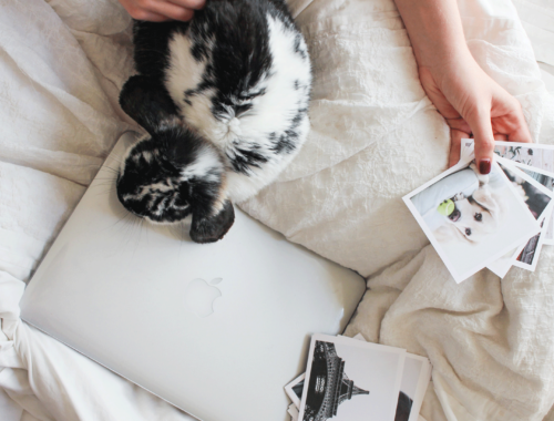 Modern Scrapbooking Products For Photo Lovers