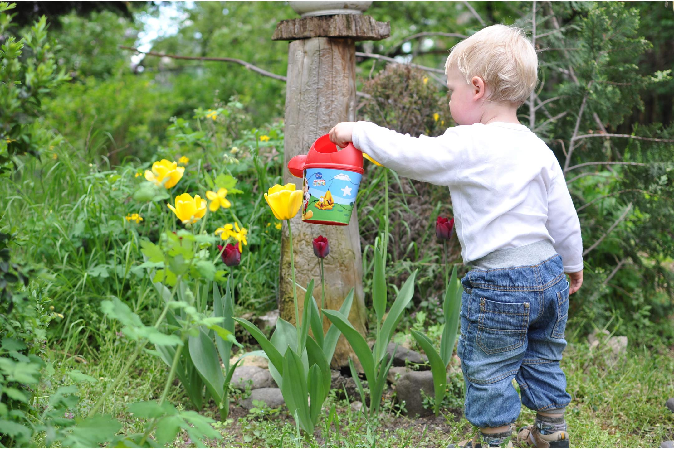 child-toddler-garden-watering2160
