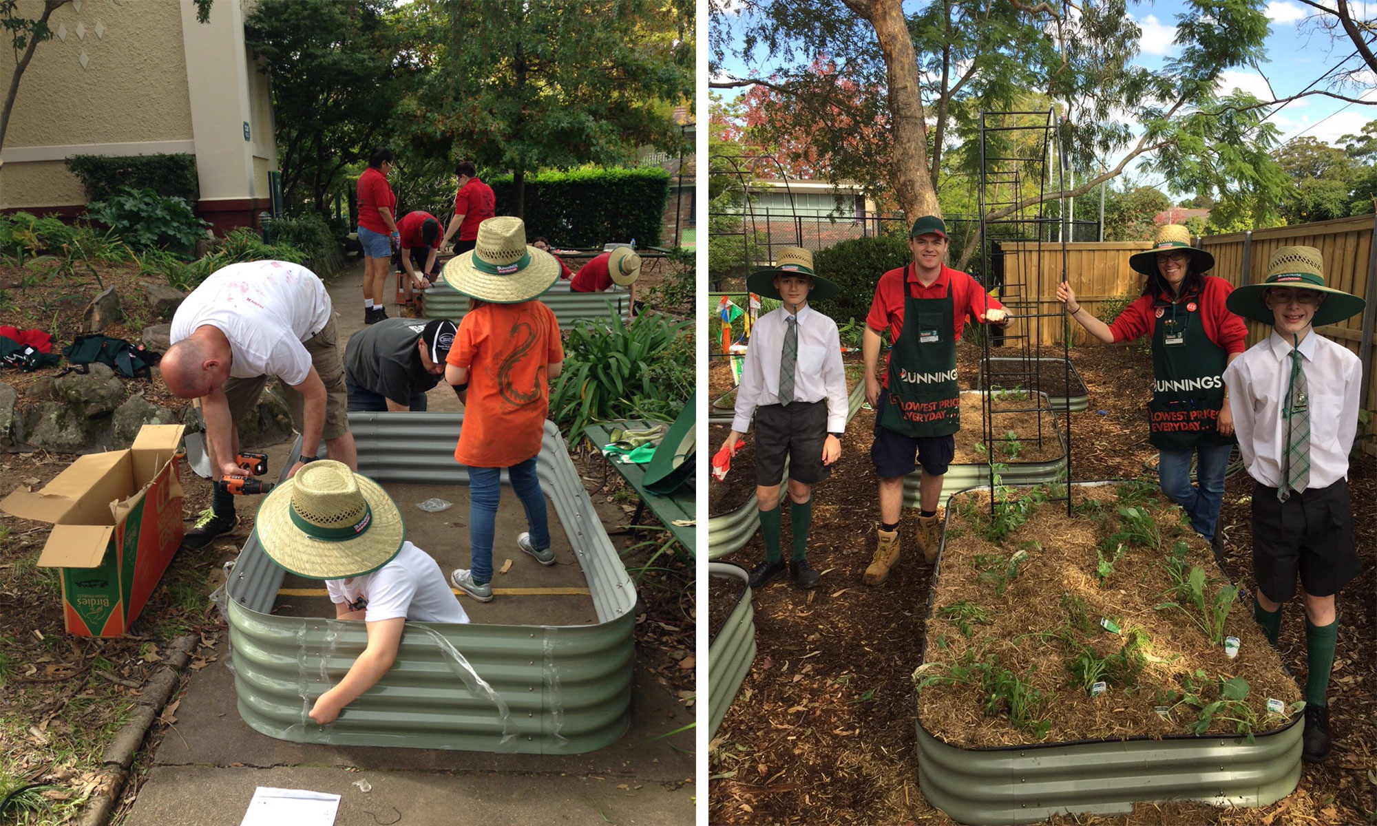 Students of Arden Anglican school build a garden box for their veggie patch with the help of Bunnings