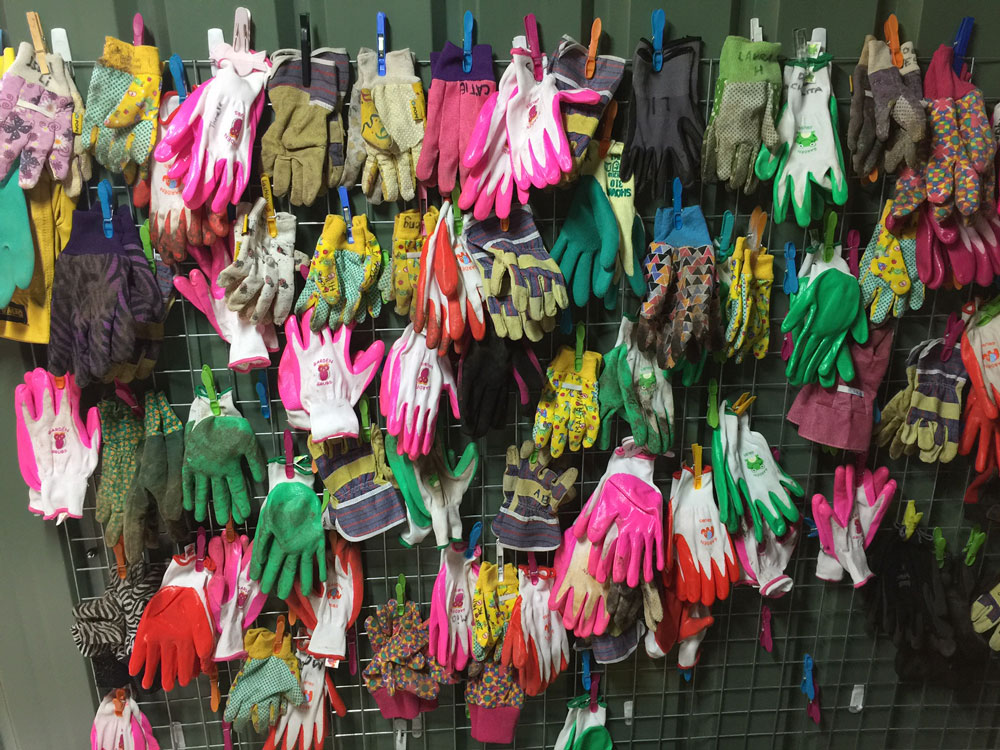Gardening gloves worn by the Students at Arden Anglican School's garden