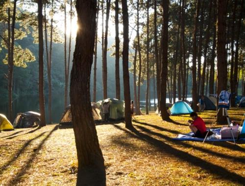 Camping-daylight1440