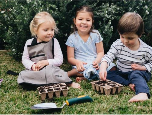 Garden-fun-eggbox-planters2160