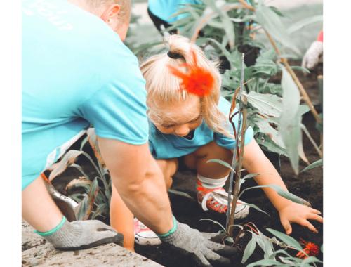 child-planting-tree2160