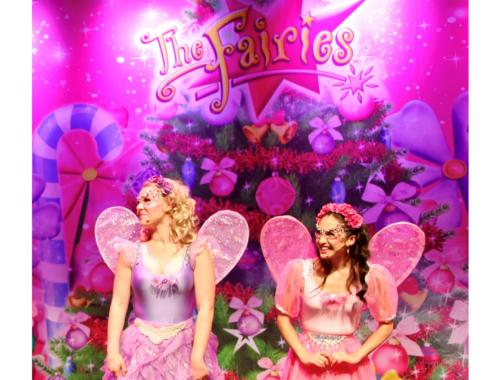 Fairies-Best&Less-christmas2160
