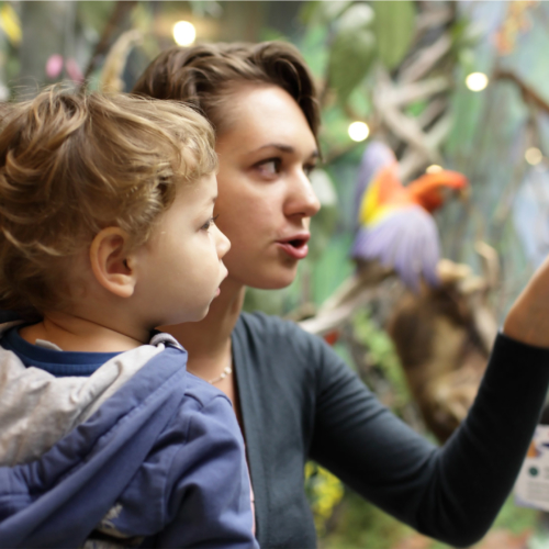 mum-and-son-in-museum2160