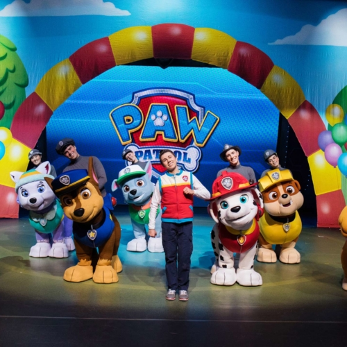 Paw-Patrol-(USA)-race-to-the-rescue2160