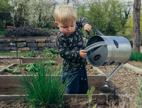 small-boy-watering-garden2160