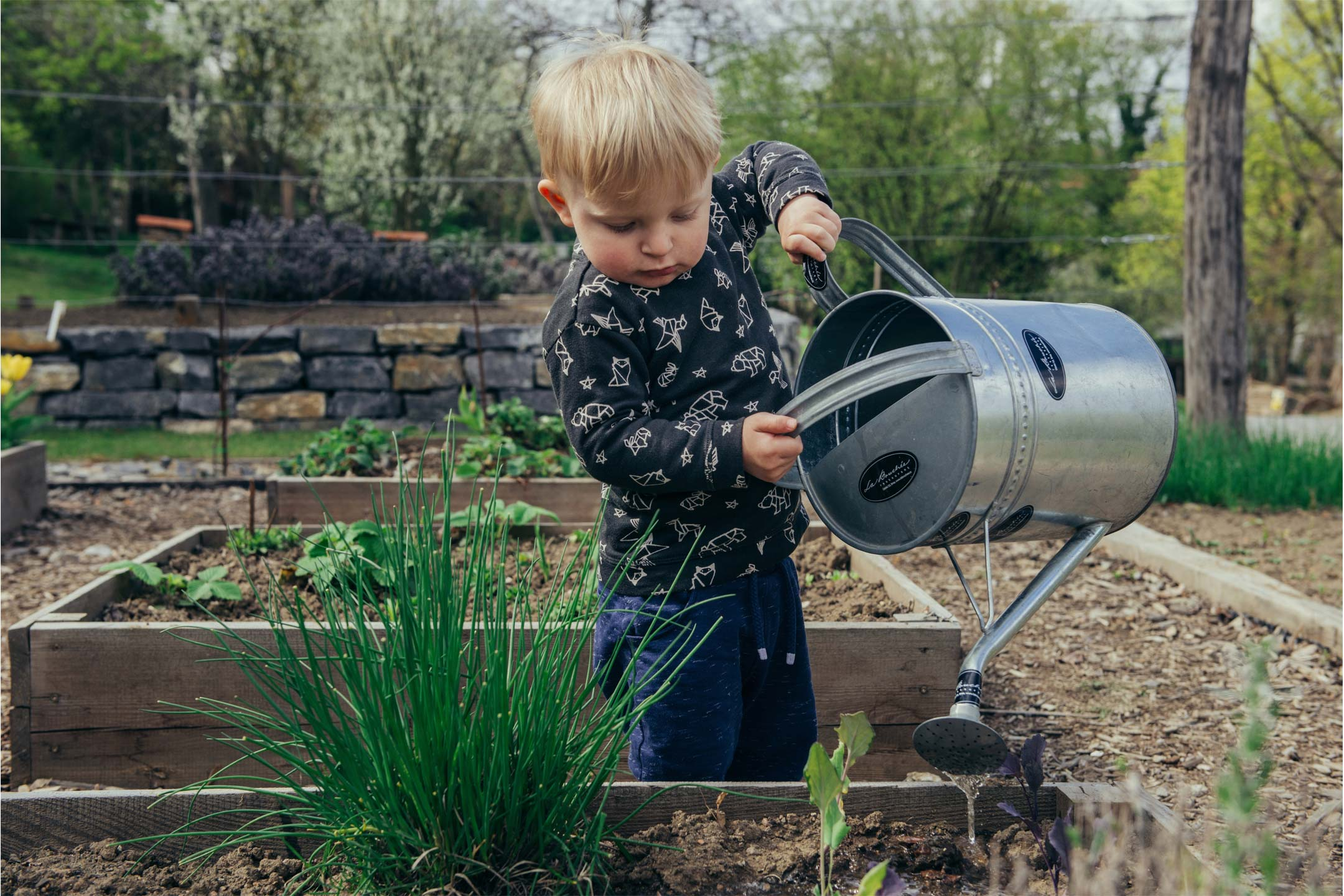 small-boy-watering-garden2160