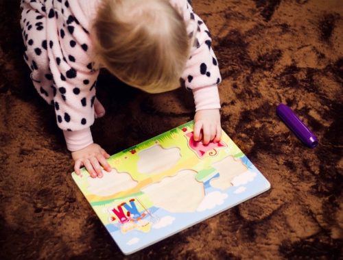 toddler-peg-puzzle2160