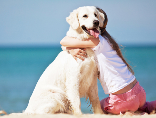 girl-hugging-dog-on-beach2160