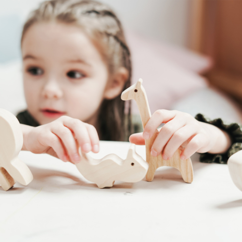 child-holding-wooden-toys2160