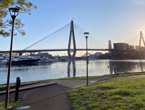 Blackwattle-Bay-crop-view-to-harbour-bridge-Sydney